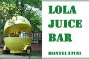 MONTECATINI - Via Delle Tamerici 69 - Telefono 348 651 0507